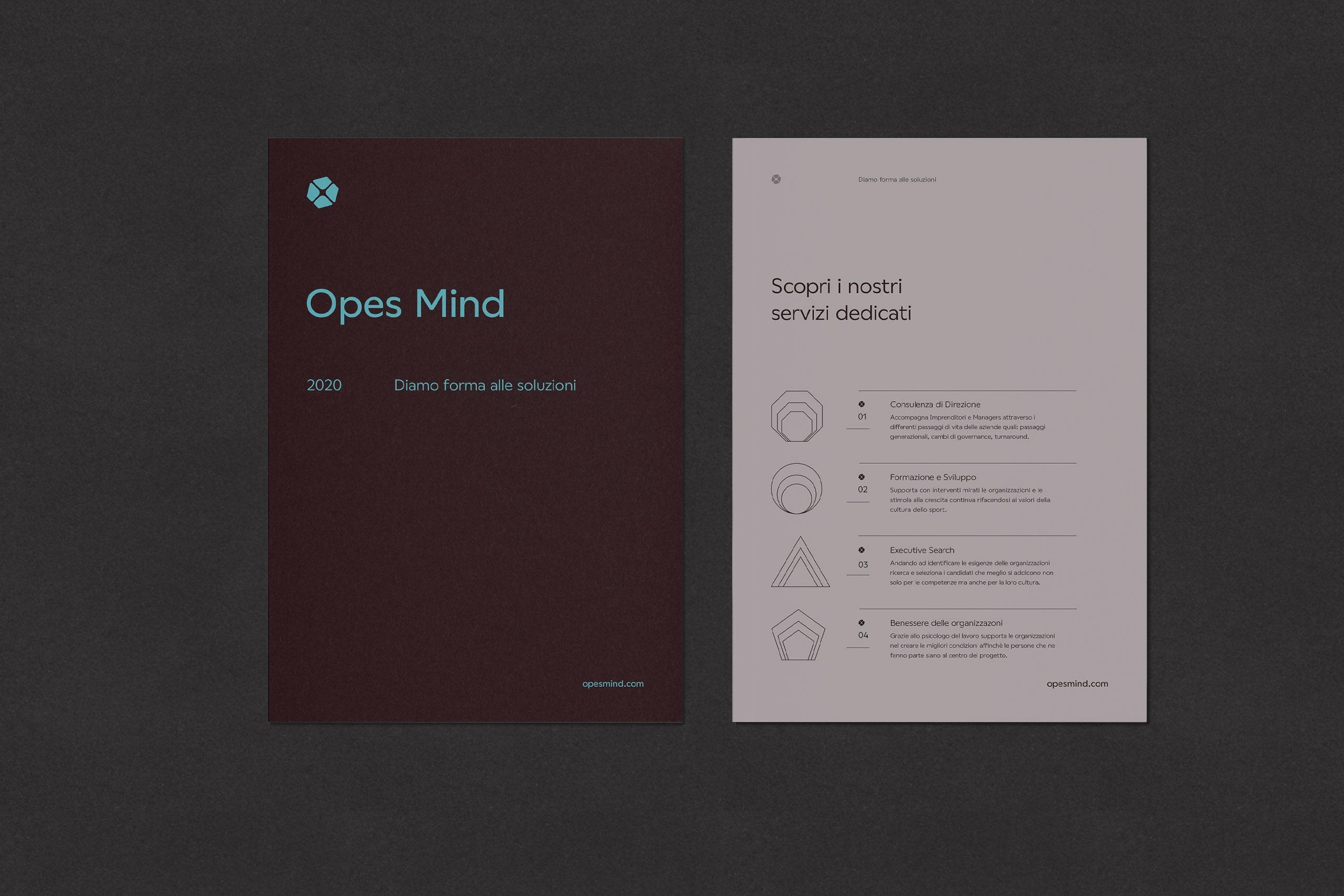 Opes Mind Flyer